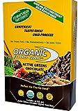 Organic Food Bar, Active Greens Chocolate, 68g (Pack of 12)