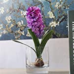 ShineBear-Artificial-Flower-Hyacinth-with-Bulbs-Ceramics-Silk-Flower-Simulation-Leaf-Wedding-Garden-Decor-Home-Table-accessorie-Plant-1pc-Color-Rose-red