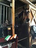 One Pass Horse & Livestock Body Blade, Sweat Scraper