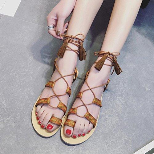 Confortables Gladiator Romaines Plates De Chaussures Marron Sandales Transer Sandales Des Dames Sport Femmes D'été WBaATzZawq