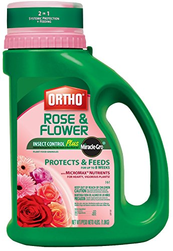 Ortho Rose (Ortho Rose and Flower Insect Control Plus Miracle-Gro Plant Food Granules, 4-Pound (Insect Control Plus Fertilizer. Not Sold in NY))