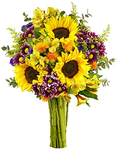 Benchmark Bouquets Flowering Fields, No Vase (Birthday Gift Bouquets)