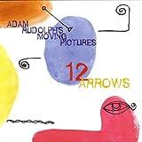 12 Arrows