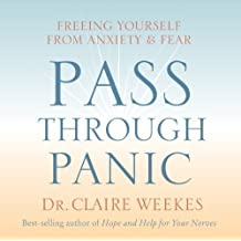 Pass Through Panic: Freeing Yourself from Anxiety and Fear by Weekes, Claire (2005)