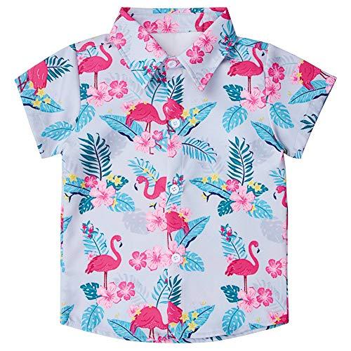 Enlifety Teenager Boys Fashion Hawaiian Button Down Shirts Summer Short Sleeve Top Tee Shirt for School 13-14 Years Old