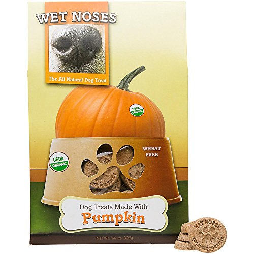 oz (Pumpkin, 1-Pack) (Wet Noses Pumpkin)