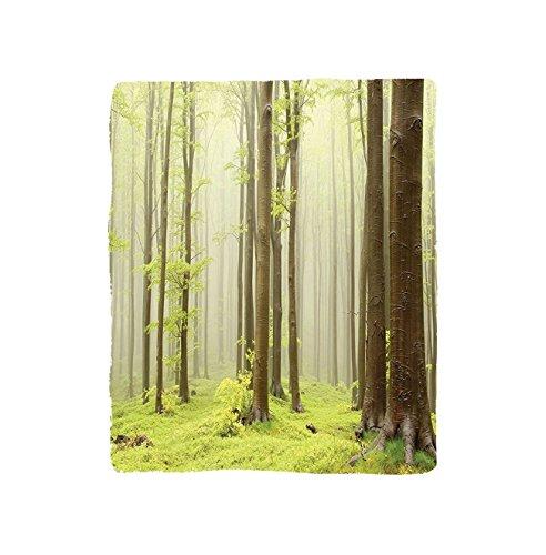 VROSELV Custom Blanket Woodland Misty Spring Beech Forest Photo Taken In The Mountains Of Central Europe Soft Fleece Throw Blanket