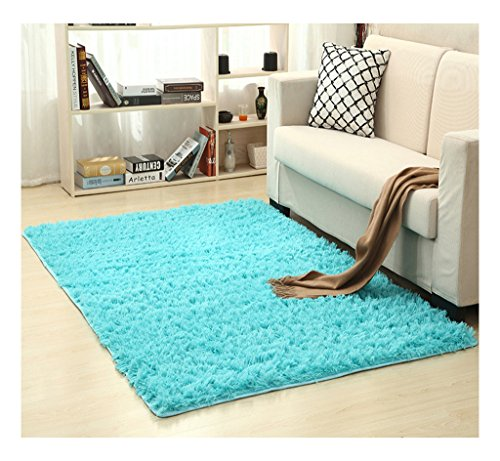 Sky Blue Rug - Plush Microfiber Area Rugs,Fluffy Long Fur Cozy Floor Carpet,Water Absorbent and Anti Slip Bath Mat,Decorative Solid Shaggy for Bedroom,Living Room,Sitting Room (Sky Blue, 30