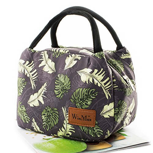 Fashionable Lunch Box for Women Insulated Cute Lunch Bag Girls - Pink/Heart/Colour stripe (Coconut (Leaf Lunch)