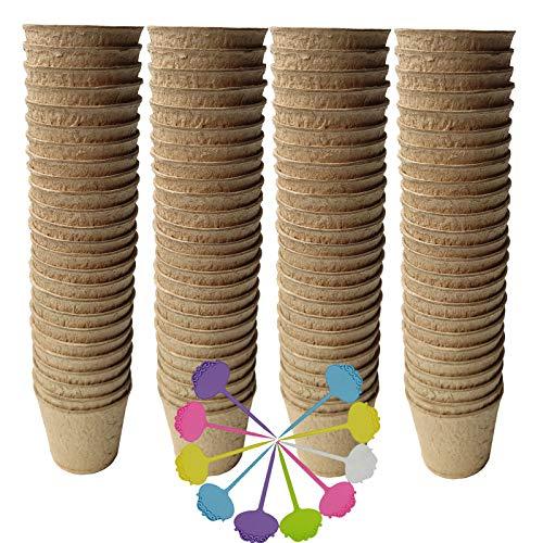 Macetas de turba biodegradables para platines pack 100