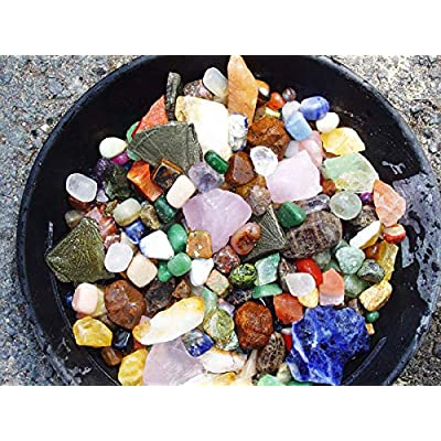 Fossil Mineral Gemstone Excavation Dino Dig Kit - 200+ Real Specimens - Great at Home Science Activity for Kids!: Industrial & Scientific
