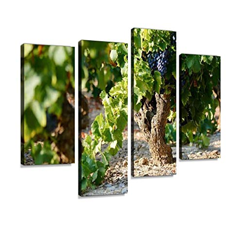 Vineyard Canvas Wall Art Hanging Paintings Modern Artwork Abstract Picture Prints Home Decoration Gift Unique Designed Framed 4 Panel ()