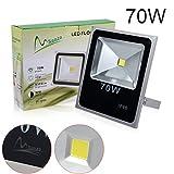 LEDMart 70W Cool White LED Integrated Flood Light (1 pack) For Sale