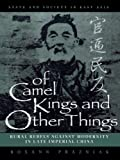 Of Camel Kings and Other Things: Rural Rebels Against Modernity in Late Imperial China (State & Society in East Asia)