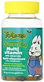 Treehouse Multivitamin with Mineral Natural Fruit Flavours Gummies, 60-Count