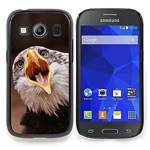 """Qstar Arte & diseño plástico duro Fundas Cover Cubre Hard Case Cover para Samsung Galaxy Ace Style LTE/ G357 (Boca grande Águila"""")"""