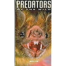 BATS Predators of the Wild
