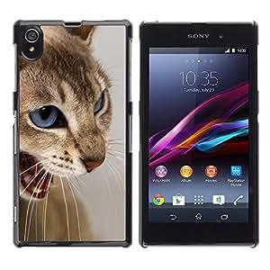 KOKO CASE / Sony Xperia Z1 L39 C6902 C6903 C6906 C6916 C6943 / gato ojos azules dientes blancos enojados marrones / Delgado Negro Plástico caso cubierta Shell Armor Funda Case Cover