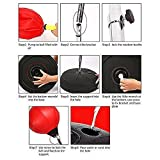 vinmax Standing Punching Bag Adult Punching Ball