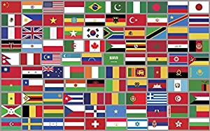 Amazon Com Sheet Of Top 100 Different World Country Flag Stickers Scrapbooking Countries Small Everything Else
