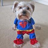 Alfie Pet by Petoga Couture - Superhero Costume Superman - Size: XS