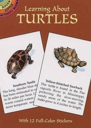 Turtle Activity Book - Learning About Turtles (Dover Little Activity Books)