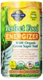 Garden of Life Perfect Food Organic Green Super Food - Energizer 285g Powder