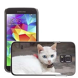 Cas Coq Case Cover // M00147608 Ojos de gato Mirada // Samsung Galaxy S5 S V SV i9600 (Not Fits S5 ACTIVE)