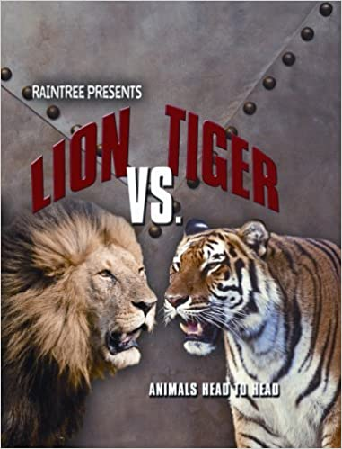 lion vs tiger animals head to head isabel thomas 9781410923981