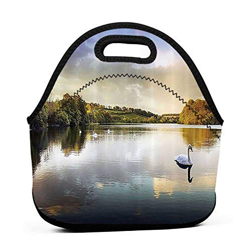 (Convenient Lunch Box Tote Bag Cottage Decor Collection,Swans Resting on a Lake Covered by Forest in the Scottish Highlands Photography,Green Blue Grey,purse with lunch bag set for work)