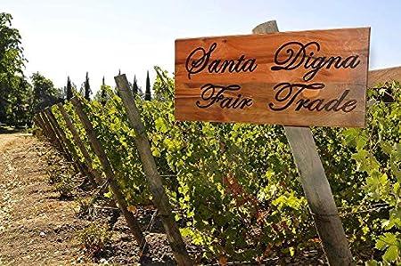 Santa Digna Chardonnay, Vino Blanco - 750 ml