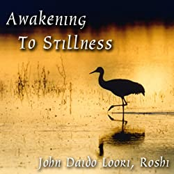 Awakening to Stillness
