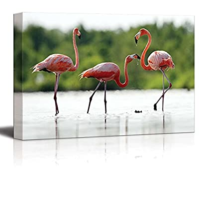 Canvas Prints Wall Art - The Pink Caribbean Flamingo on Water | Modern Home Deoration/Wall Art Giclee Printing Wrapped Canvas Art Ready to Hang - 16