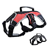 Dog Walking Lifting Carry Harness, Support Mesh Padded Vest, Accessory, Collar, Lightweight, No More Pulling, Tugging or Choking, for Puppies, Small Dogs (Red, Medium), by Downtown Pet Supply