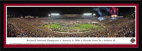 BCS 2014 Football Champions - Florida State - Blakeway Panoramas College Sports Posters with Select Frame