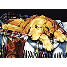 Greek Art Paintworks Paint Color By Number,Waiting Dog,16-Inch by 20-Inch