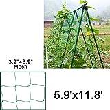Mr.Garden Trellis Netting For Climbing Plants, Green Color (5.9Ft x 11.8Ft)