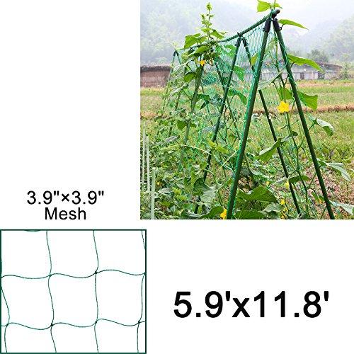 Mr.Garden Trellis Netting For Climbing Plants, Green Color (5.9Ft x 11.8Ft) by Mr Garden