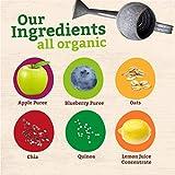 Peter Rabbit Organics Super Oats & Seeds Apple