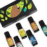 OK For Kids 6 Set - Edens Garden Essential Oil Synergy Blends - (6) 10 ml (Bee Happy, Healthy Hero, Rise & Shine, Sleepy Head, Sniffles & Sneezes, Study Buddy)