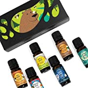 OK For Kids 6 Set - Edens Garden Essential Oil Synergy Blends - (6) 10 ml (Bee Happy, Healthy Hero, Rise & Shine, Sleepy Head, Sniffles & Sneezes, Study Buddy)