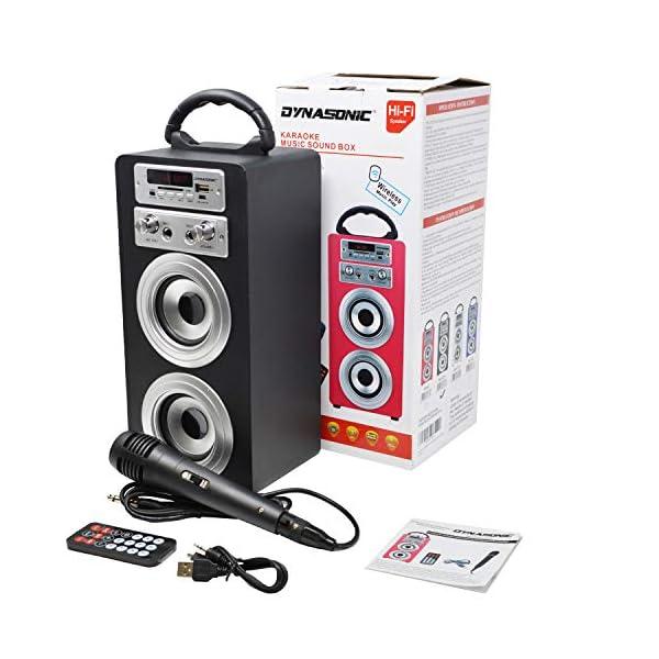 DYNASONIC Enceinte Bluetooth Karaoké Portable série 025 Noir Radio FM, Connexion Bluetooth 2.1, Lecteur SD USB et Microphone 5