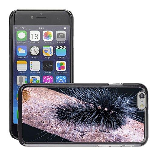 "Bild Hart Handy Schwarz Schutz Case Cover Schale Etui // M00133519 Caterpillar Insekt Feigen Hairy // Apple iPhone 6 PLUS 5.5"""