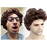 """STfantasy Men Wigs Male Short Layered Curly Wavy Hair Daily Cosplay Party (12"""" Brown)"""