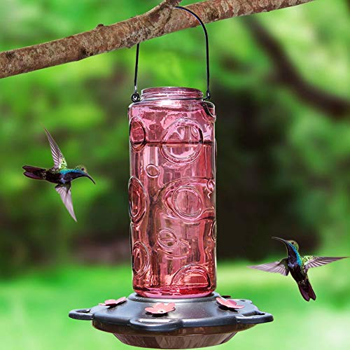 Juegoal 28 oz Glass Hummingbird Feeders for Outdoors, Red Wild Bird Feeder with 5 Feeding Ports, Metal Handle Hanging for Outdoor Garden Tree Yard ()