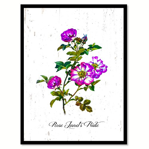 Purple Rose Flower Picture Framed Canvas Print Photo Floral Home Decor Wall Art Living Room