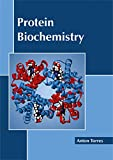 img - for Protein Biochemistry book / textbook / text book
