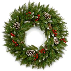 National Tree 24 Inch Frosted Berry Wreath with Red Berries and Cones (FRB-24W-1)