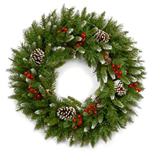 National Tree 24 Inch Frosted Berry Wreath with Red Berries and Cones (FRB-24W-1) 42