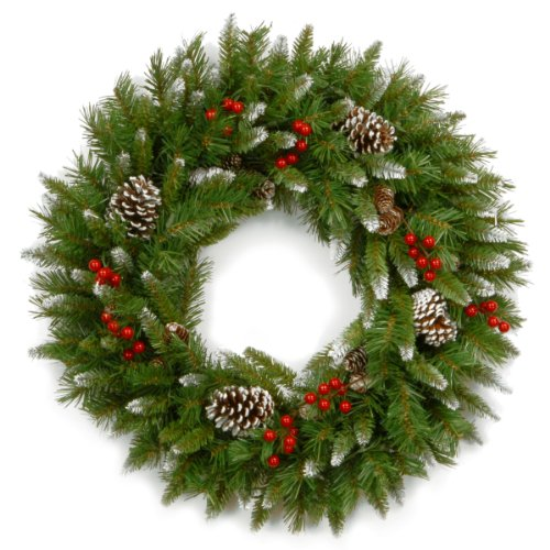 National Tree 24 Inch Frosted Berry Wreath with Red Berries and Cones (FRB-24W-1) - Red Berry Christmas Wreath